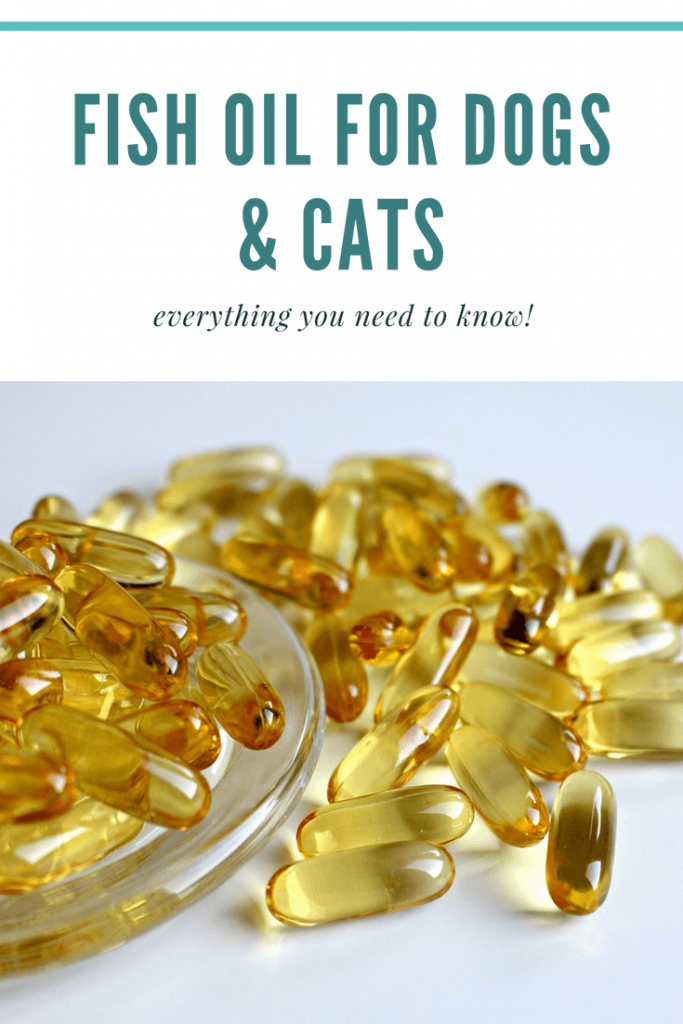 Fish Oil For Dogs & Cats
